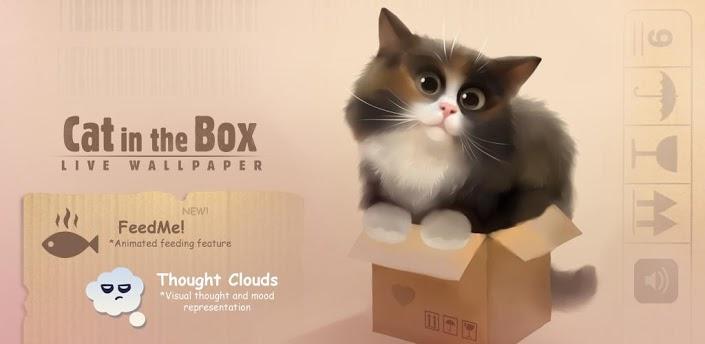 无敌萌萌可爱动态壁纸:盒子里的小猫cat